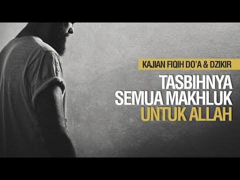 Tasbihnya Semua Makhluk Untuk Allah & Makna Tasbih  - Ustadz Ahmad Zainuddin Al Banjary