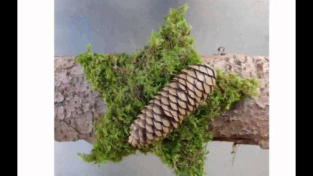 Haus Deko Ideen: Dekoration Naturmaterialien YouTube