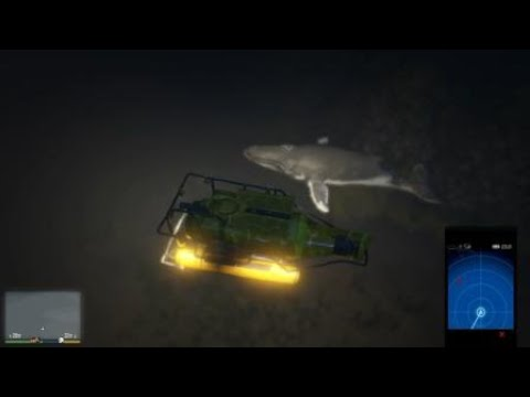 Grand Theft Auto V and their underwater wonders