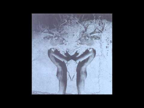 Deerhunter - Adorno