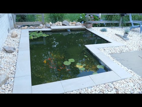 DIY Modern Backyard Koi Pond On A Budget