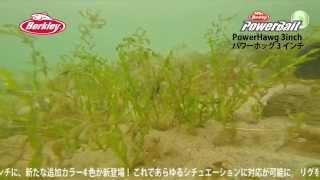【水中動画】PowerHawg 3inch.4inch(パワーホッグ3インチ,4インチ)