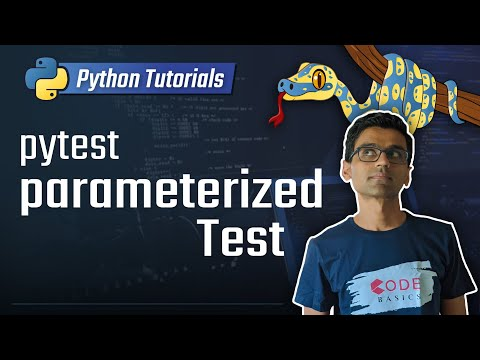 Python unit testing - pytest parameters