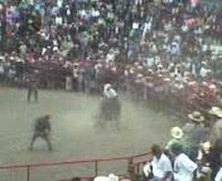 JARIPEO HUANIQUEO, MICHOACAN 2007 Video