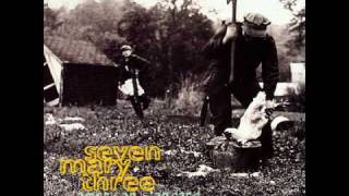 Watch Seven Mary Three Roderigo video