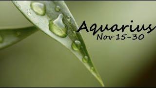 AQUARIUS Love Nov 15 30 2018 Wow, Wow, Wow the love!