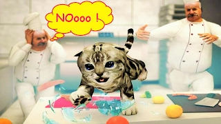 Pet Care Game - Play with Bad Kitty Cat Simulator Fun For Children