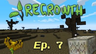 Regrowth Ep 7 - Endoflame, Runic Altar