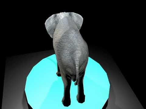 Elefant texturització