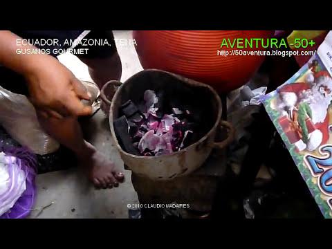 Ecuador, Amazonia, Gusanos gourmet medicinales