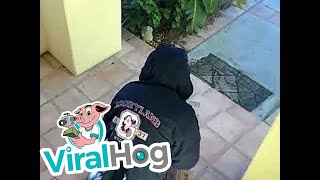 Grinch Porch Pirate || ViralHog