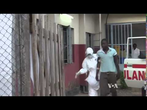 Ebola Virus Outbreak 2014 in West Africa