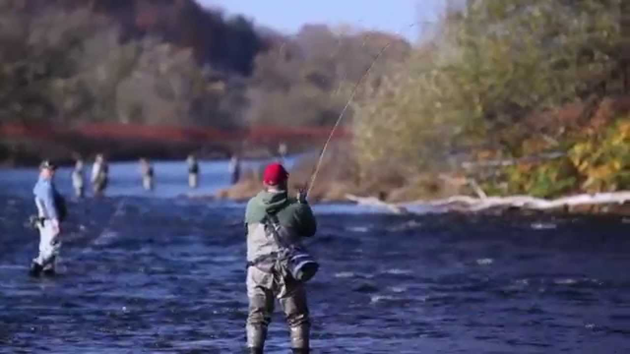 Salmon river fishing trip 2012 youtube for Salmon river ny fishing regulations