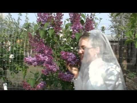 Videoclip Nunta Danut si Monica Liesti- Galati