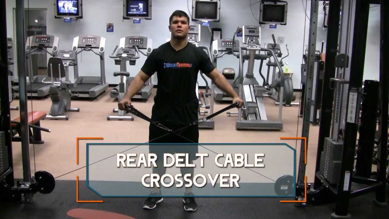 Rear Delt Cable Raise Rear Delt Cable Crossover