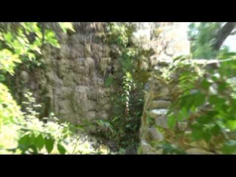TEL DAN NATURE RESERVE -ISRAEL