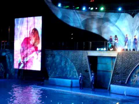 Sea World After Dark Video
