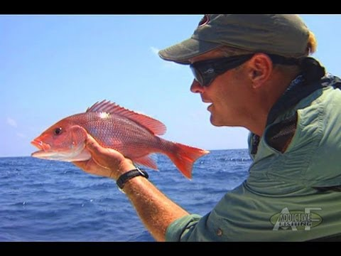 Addictive Fishing: Destination Panhandle - RED SNAPPER fishing