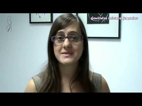 T0202 GENITALES INTERNOS FEMENINOS