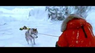 Paul Walker 'Eight Below' Interview