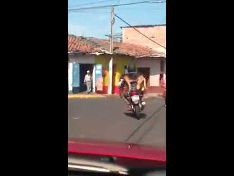 バランス感覚抜群?!変わった乗り方でバイクの後ろをキープする犬