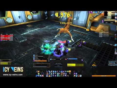 Brawler's Guild - Unguloxx (Rank 6)