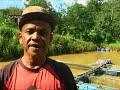 Penduduk Kampung Meranto ketakutan akibat gangguan gajah liar MP3
