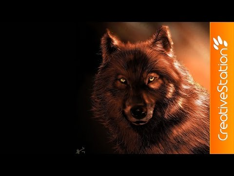 Wolf - Speed painting (#Photoshop) | CreativeStation