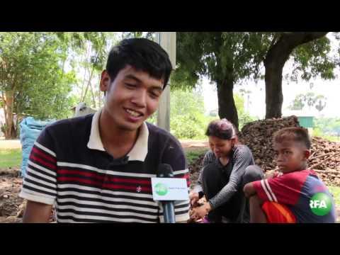 Business of Selling Sugar Palm Kernels of Phnom Bat Commune Residents