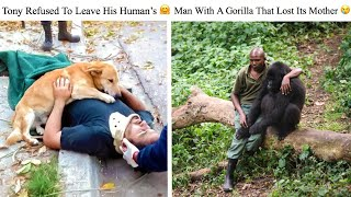 Moving Photos That Can Melt The Coldest Of Hearts