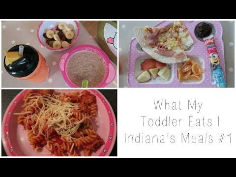 What My Toddler Eats | Indiana's Meals #1