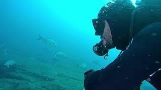 Scuba diving sardina: L'Infinito Vivente!