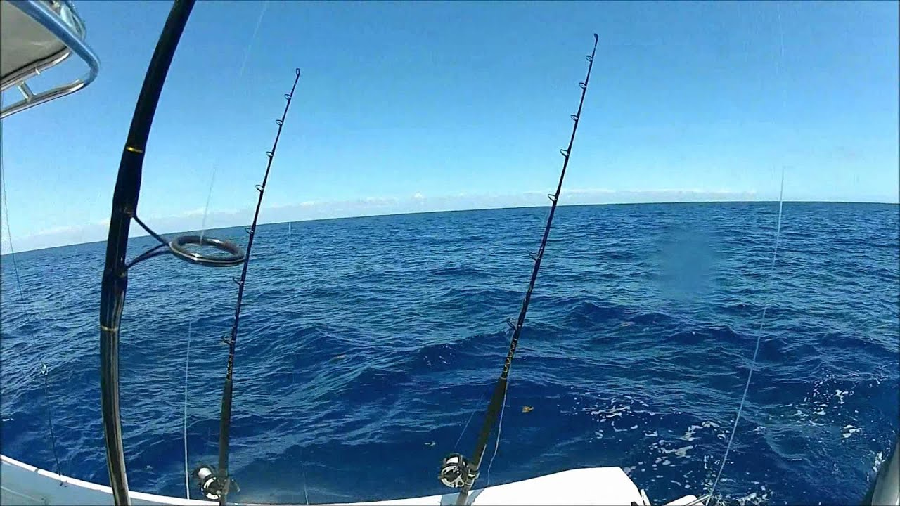 Dolphin fishing pompano beach florida 5 25 2012 youtube for Dolphin fishing florida