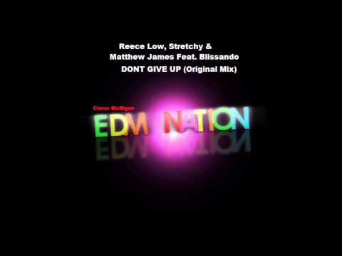 Reece Low, Stretchy & Matthew James Feat Blissando - Dont Give Up (Original Mix)