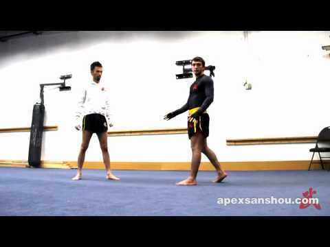 Apex Sanshou Team - Takedown Technique Tutorial Image 1