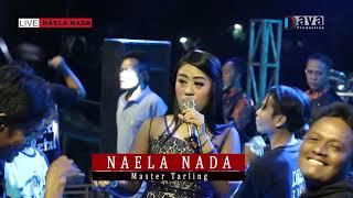 Iwak Peda - Tria Aulia - NAELA NADA Live gebang