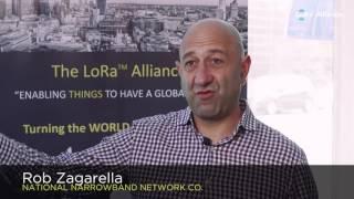 Why do over 400 companies use LoRaWAN ?