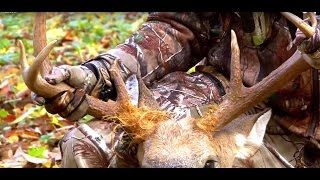 Early Season Bowhunting Deer ~ The Crabby 8