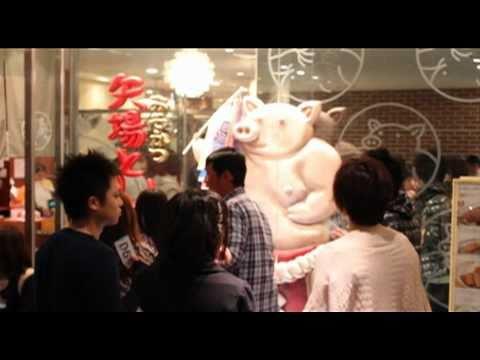 The Chronic Liars Guide to Nagoya Sakae