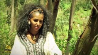 Ethiopia - Dawit Nega - Selam Leki [NEW! Music 2016 - Happy New Year]