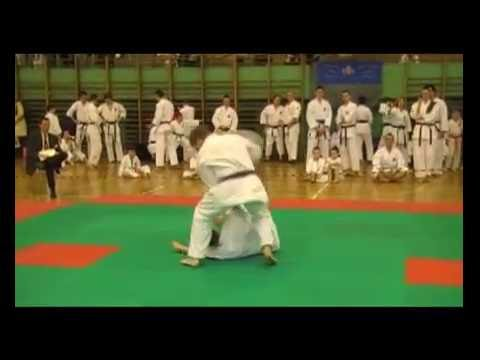 X Mistrzostwa Polski Shorin-Ryu Karate Image 1