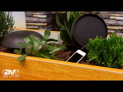 CEDIA 2015: TruAudio Features SubTerrain-12 Subwoofer and 6.5″ Landscape Speakers