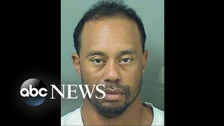 Tiger Woods' DUI arrest: What happened when police found him