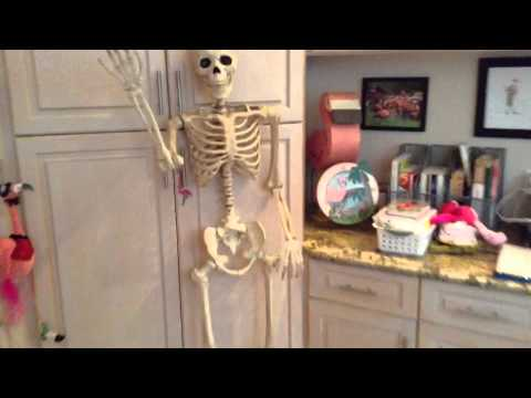 PHOBIAS Haunt Build 2014 Part 19: Mr. Marrow, The Pose-N-Stay Skeleton from Costco