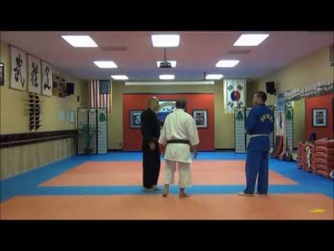 Karate VS Hapkido Part # 2 Friendly training Valrico,Brandon,Tampa,Riverview,fl Image 1