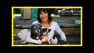 | Dog Rescue StoriesFounder Of Senior Dog Rescue Is Honored As A CNN Hero Of The Year