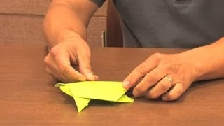 Step-by-step Origami Turtles : Origami Animals