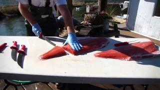 How To Fillet King Salmon with The Bubba Blade
