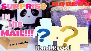 SURPRISE in the mail?! + Hand REVEAL!