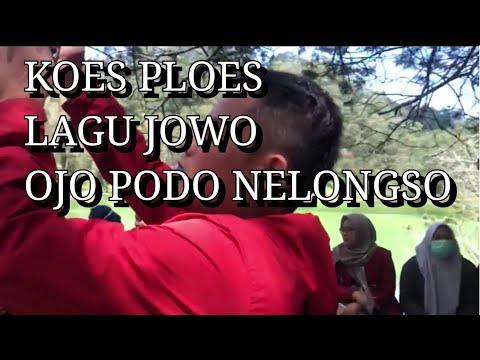 Koes Ploes - Ojo Podo Nelongso (versi) Pengamen Dieng Wonosobo Semua Penonton Pada Goyang